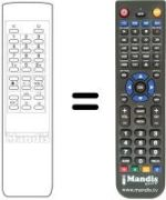 Replacement remote control Gm CTV 137