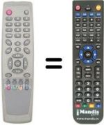 Replacement remote control FREE 1001