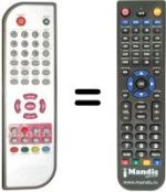 Replacement remote control DANYSTAR DVB-T 136